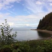 Hoonah-Alaska-Rainforest
