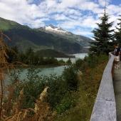 Juneau-Alaska-Bear-Viewing-Area
