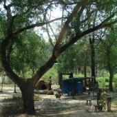 Backwaters_India-096