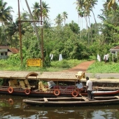 Backwaters_India-100