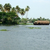 Backwaters_India-115