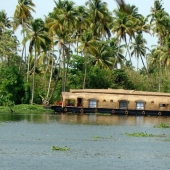 Backwaters_India-116