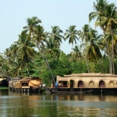 Backwaters_India-117