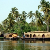 Backwaters_India-118