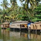 Backwaters_India-119