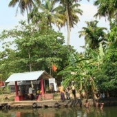 Backwaters_India-122