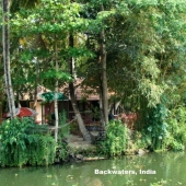 Backwaters_India-124