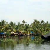 Backwaters_India-125