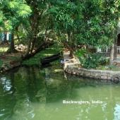 Backwaters_India-127