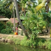 Backwaters_India-132