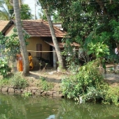 Backwaters_India-133