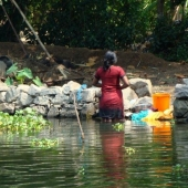 Backwaters_India-139