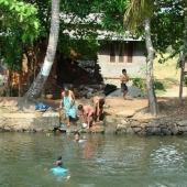 Backwaters_India-143
