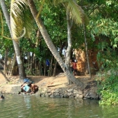 Backwaters_India-144