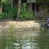 Backwaters_India-158