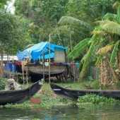 Backwaters_India-169