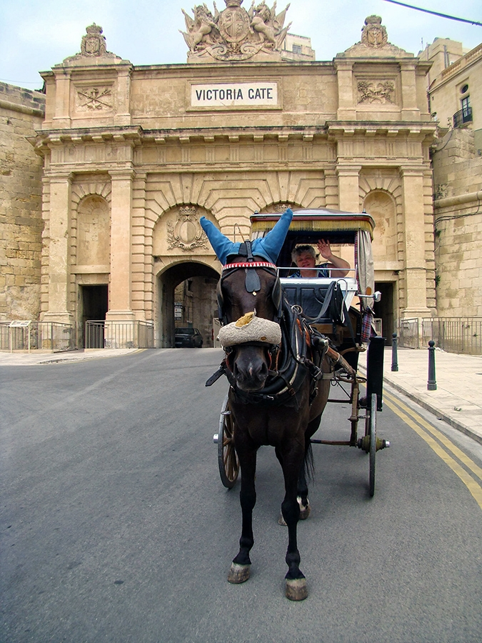 6-in-malta-i-choose-to-tour-the-city-of-valletta-by-horse-and-buggy