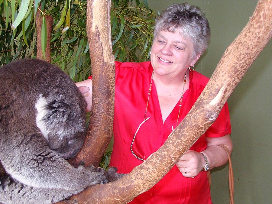 Travel with Sara Raney to see koala bears in Australia