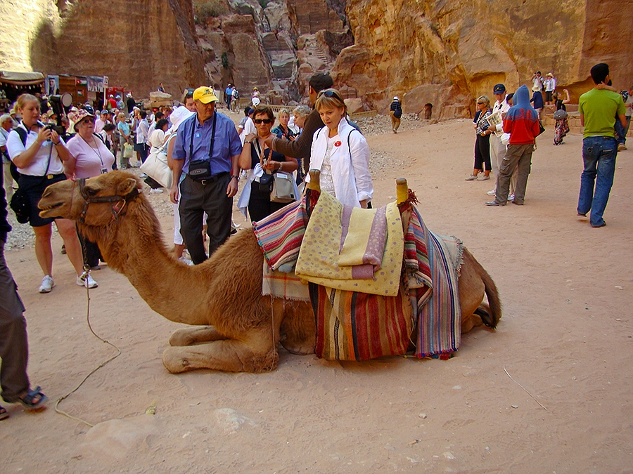 Travel with Sara Raney to Petra, Jordan. (Photo taken in the Red Rose City.)
