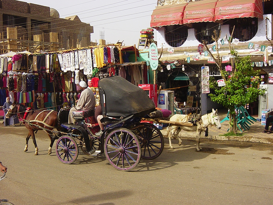 Travel with Sara Raney to Nile, Egypt