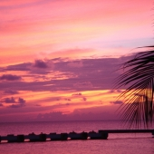 Travel with Sara Raney to Belize