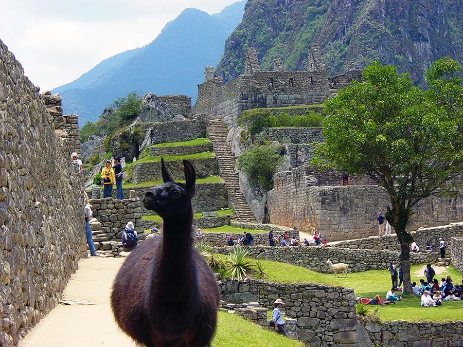 Peru-Chili-38_900x675