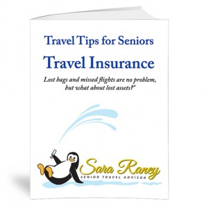 Travel-Tips-by-Sara-Raney_INSURANCE